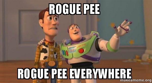 When i pee it goes everywhere