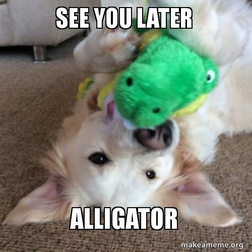 see you later alligator make a meme