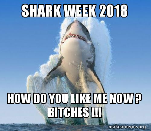Shark week 2018 how do you like me now ? bitches !!! | Make