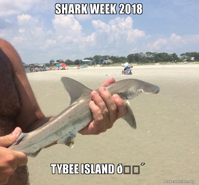 SHARK WEEK 2018 Tybee Island 🌴 | Make a Meme