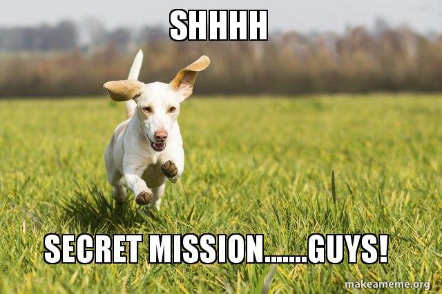 Shhhh Secret Missionguys Make A Meme