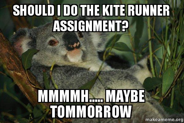 the kite runner friendship essay