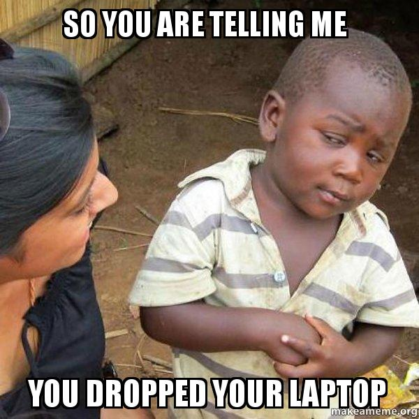 so you are pj9x66 so you are telling me you dropped your laptop skeptical third