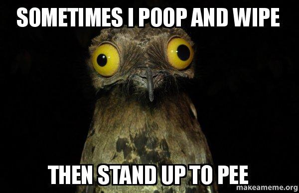 Weird Stuff I do Potoo meme