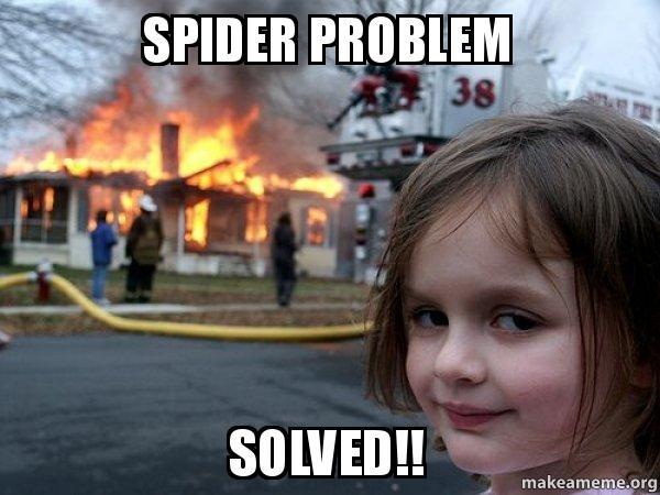 spider problem solved spider problem solved!! disaster girl make a meme
