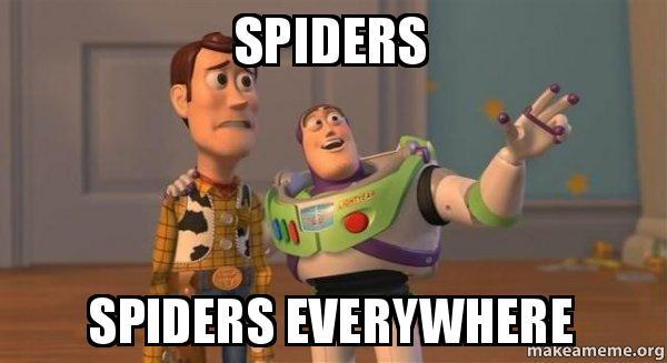 spiders-spiders-everywhere-k7skt2.jpg