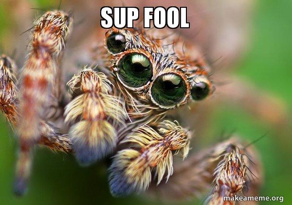 Sup Fool Hipster Spider Make A Meme