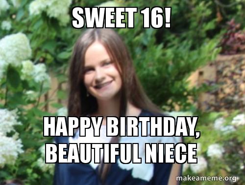 Happy Birthday Niece Meme ~ Sweet happy birthday beautiful niece make a meme