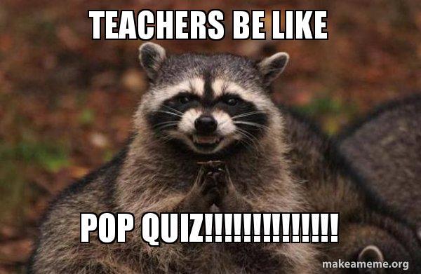 teachers be like 3rj8qh teachers be like pop quiz!!!!!!!!!!!!!! evil plotting raccoon
