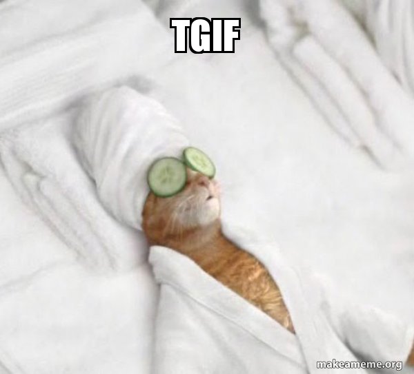 Tgif Pampered Cat Meme Make A Meme