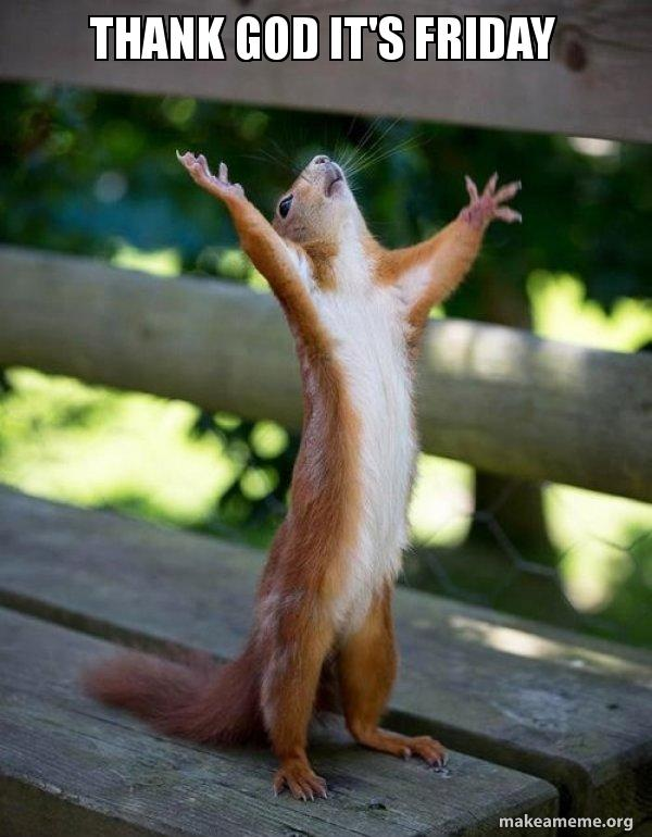 Thank God Its Friday Happy Squirrel Make A Meme