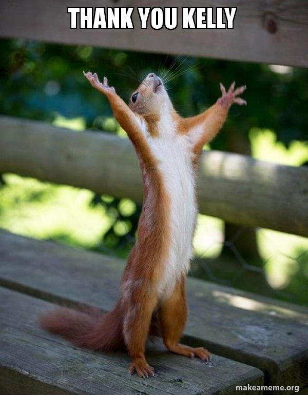 thank you kelly thank you kelly happy squirrel make a meme