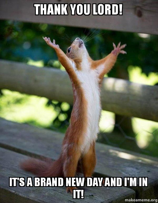 Funny Thank You Lord Meme : Happy squirrel meme