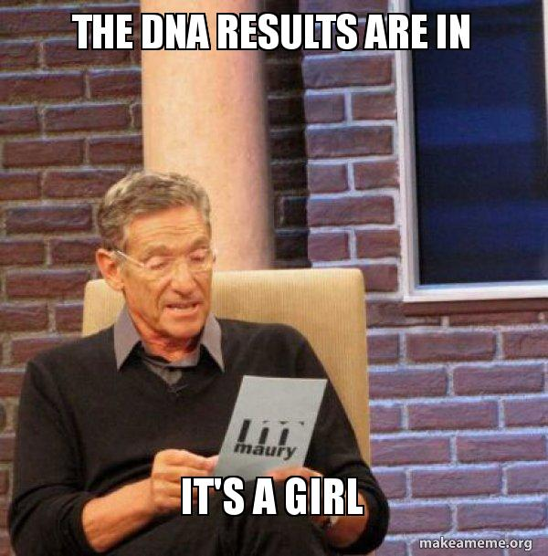 the dna results are in it s a girl maury povich dna make a meme