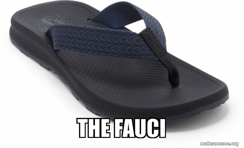 the fauci | Make a Meme