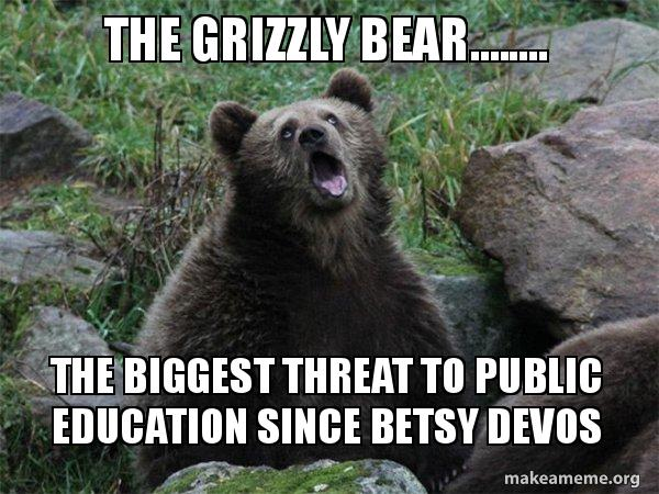 the grizzly bear n89zf5 the grizzly bear the biggest threat to public education