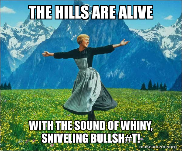Sound of Music meme