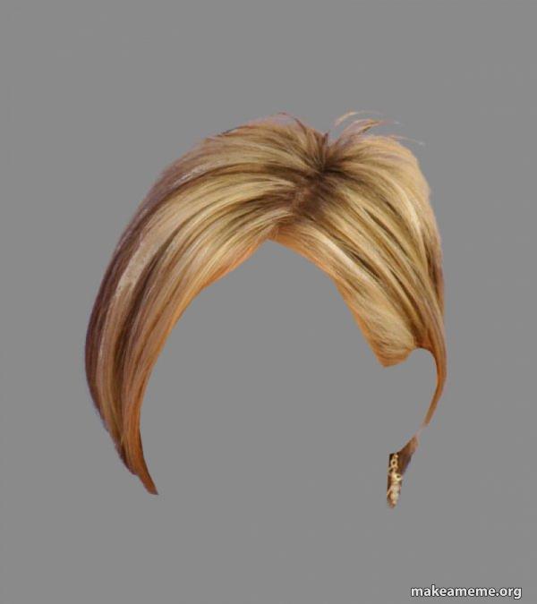 The Karen Hair meme