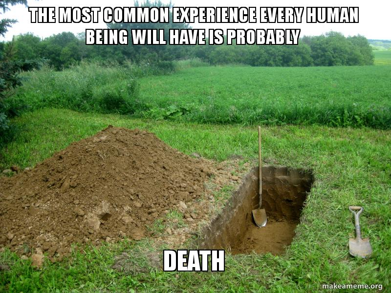 The most common experience every human being will have is