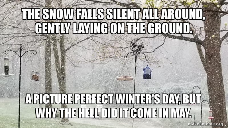 The Snow Falls Silent All Around Gently Laying On The Ground A