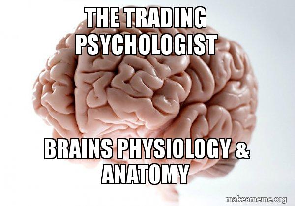 THE TRADING PSYCHOLOGIST BRAINS PHYSIOLOGY & ANATOMY