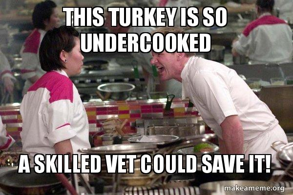 this turkey is gq5dlo this turkey is so undercooked a skilled vet could save it! gordon