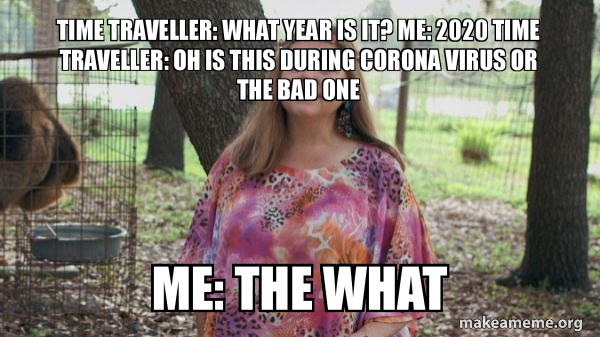 Time traveller: what year is it? Me: 2020 time traveller: oh is this during corona virus or the bad one Me: the what - Carole Baskins (Carol ?) | Make a Meme