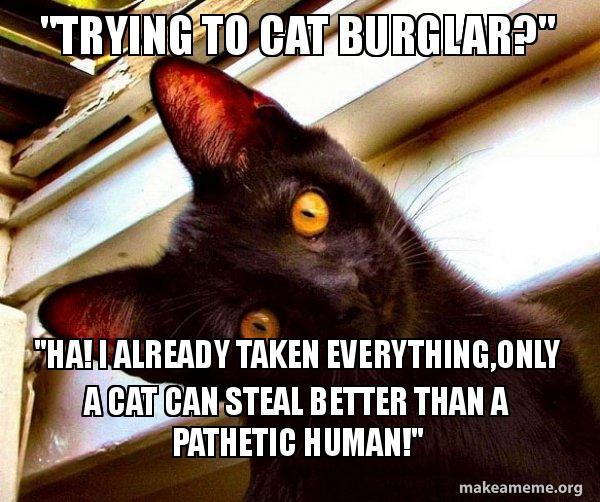 Trying To Cat Burglar Ha I Already Taken Everythingonly A Cat