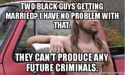 Almost Politically Correct Redneck meme