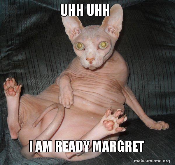 Uhh Uhh I Am Ready Margret Funny Cats Make A Meme