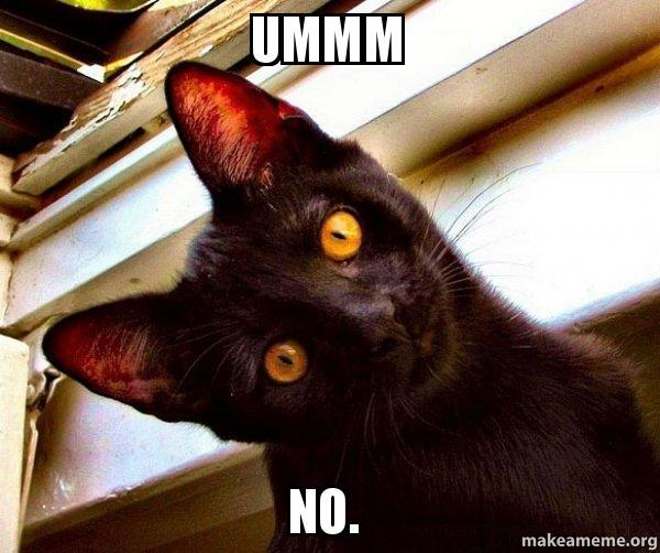 Ummm No. - Overly Attached Cat   Make a Meme