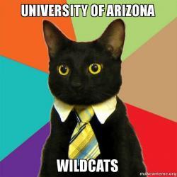 university of arizona university of arizona wildcats make a meme