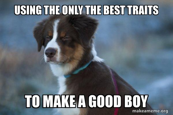 Unsure Dog meme