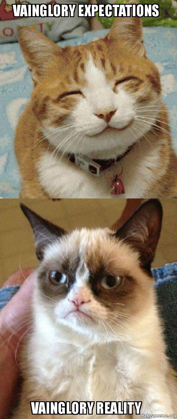 Vainglory expectations Vainglory reality - Grumpy Cat vs