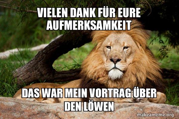 Contemplative Lion meme