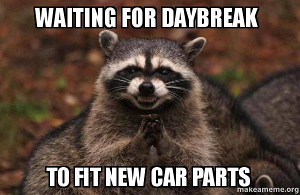Waiting For Daybreak To Fit New Car Parts Evil Plotting Raccoon
