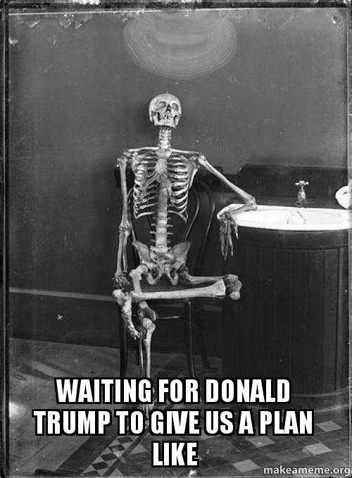 Waiting for Donald Trump to give us a plan like | Make a Meme