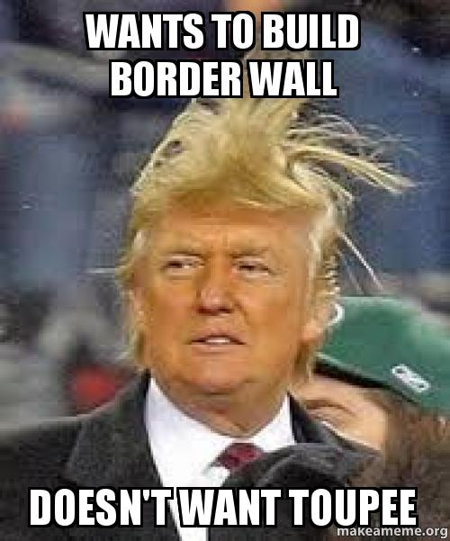 Wants To Build Border Wall Doesn T Want Toupee Make A Meme
