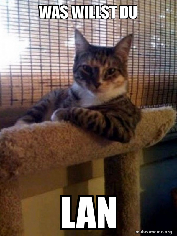 The Most Interesting Cat in the World meme