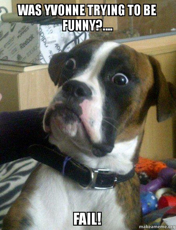 was yvonne trying was yvonne trying to be funny? fail! skeptical dog make a meme