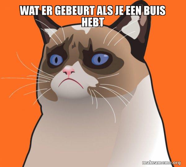 Cartoon Grumpy Cat meme