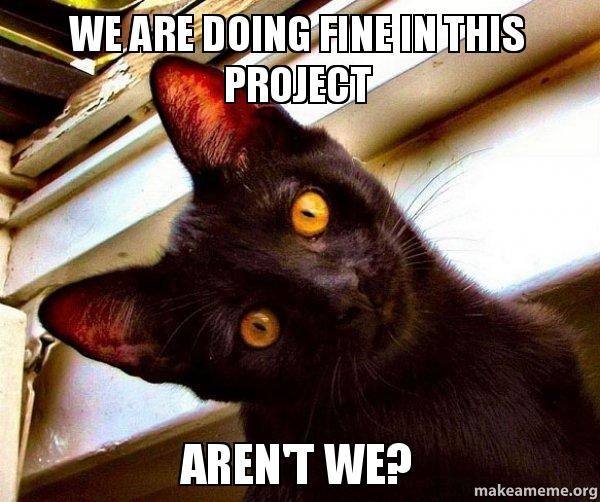 Doing Fine >> We are doing fine in this project Aren't we? - Overly Attached Cat | Make a Meme