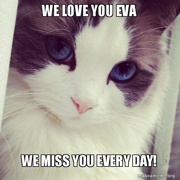 We Love You Eva We Miss You Every Day Evas Meme Make A Meme