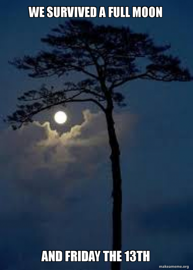 We survived a full moon and friday the 13th - Full moon ...
