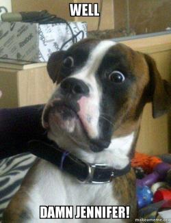 well damn jennifer well damn jennifer! skeptical dog make a meme