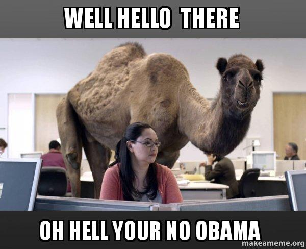 Well Hello There Oh Hell Your No Obama Hump Day Camel Make A Meme