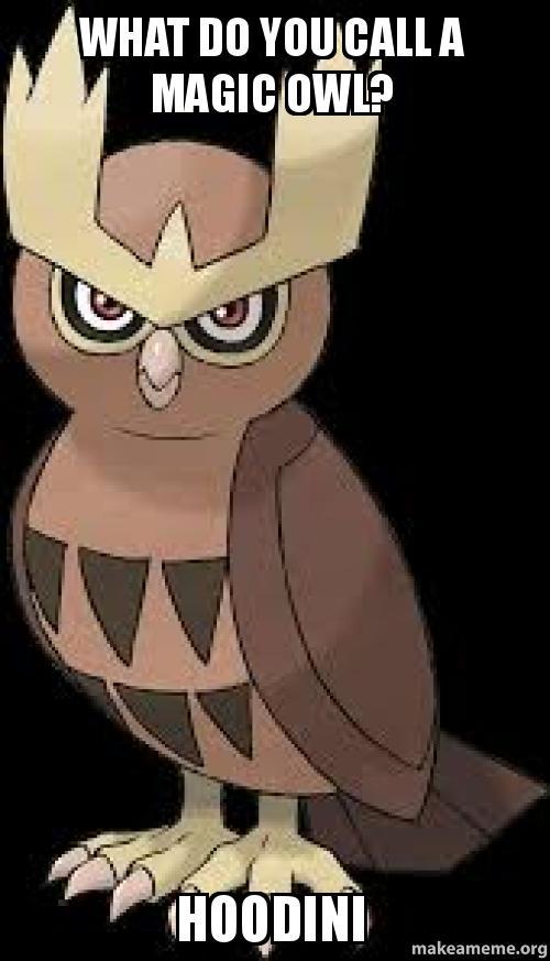 how to make an owl call