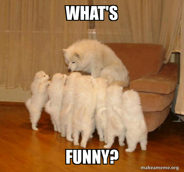 Storytelling Dog meme