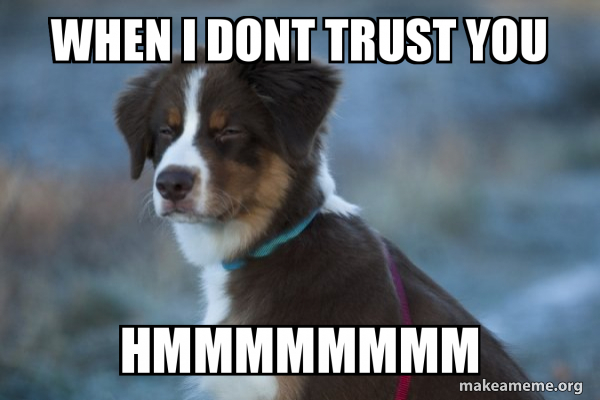 Unsure Dog meme