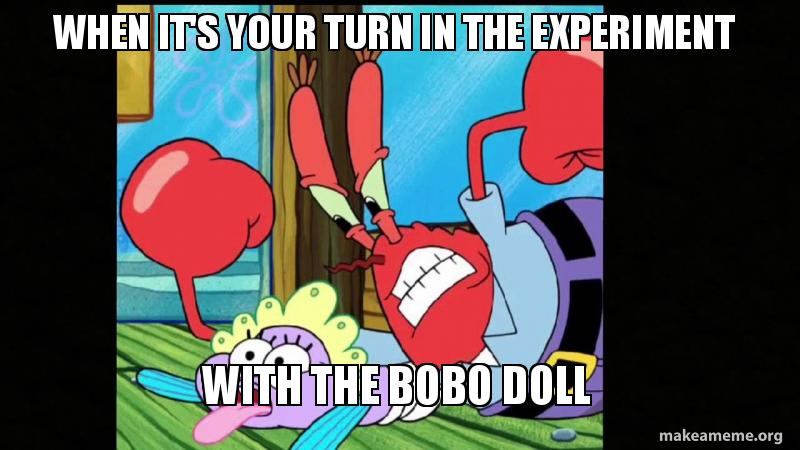 When Its Your Turn In The Experiment With The Bobo Doll Make A Meme